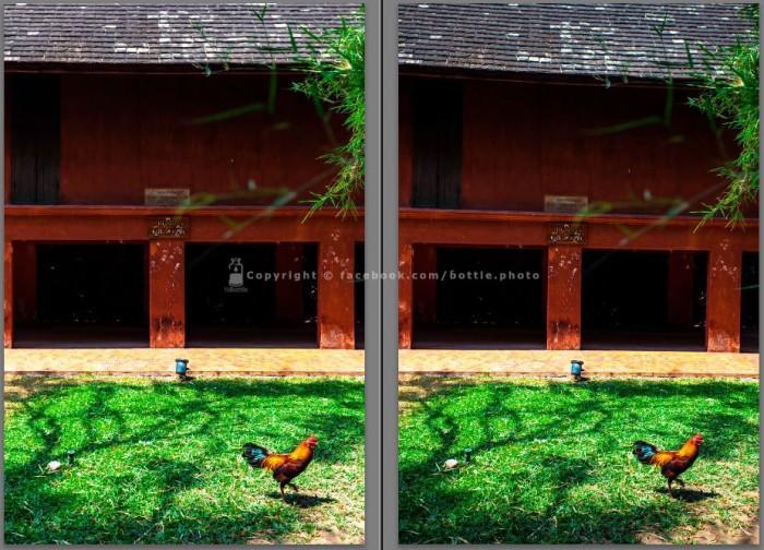 lens-correction-09