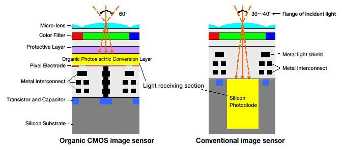 ออแกนิกเซนเซอร์   เทคโนโลยี ที่จะเปลี่ยนโลกการถ่ายภาพ